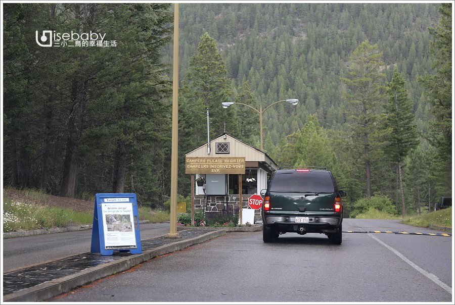 加拿大露營 | 遇見大角羊國家公園營地。Redstreak Campground