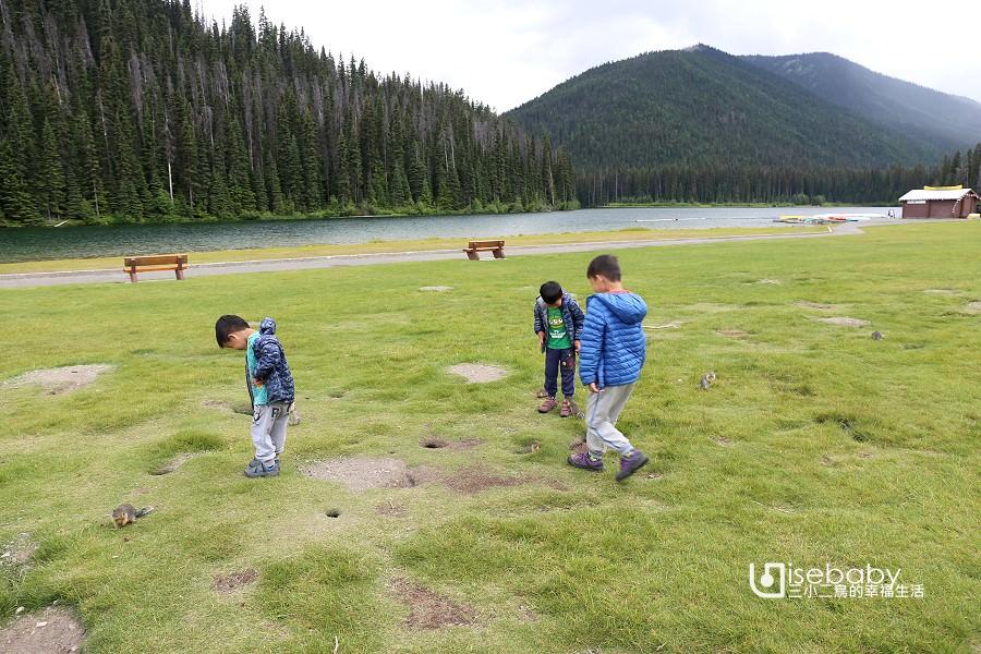 加拿大哥倫比亞地松鼠來這裡看!曼寧省立公園閃電湖Lightning Lake