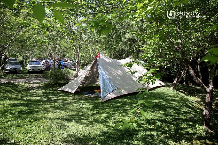 露營 | 苗栗南庄。青杉嶴露營區.清幽靜謐的森林感推薦營地