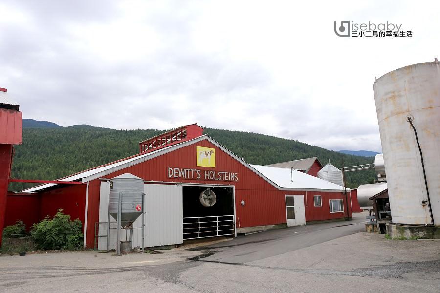 加拿大 | 濃純香冰淇淋必吃推薦。D Dutchmen Dairy Ltd