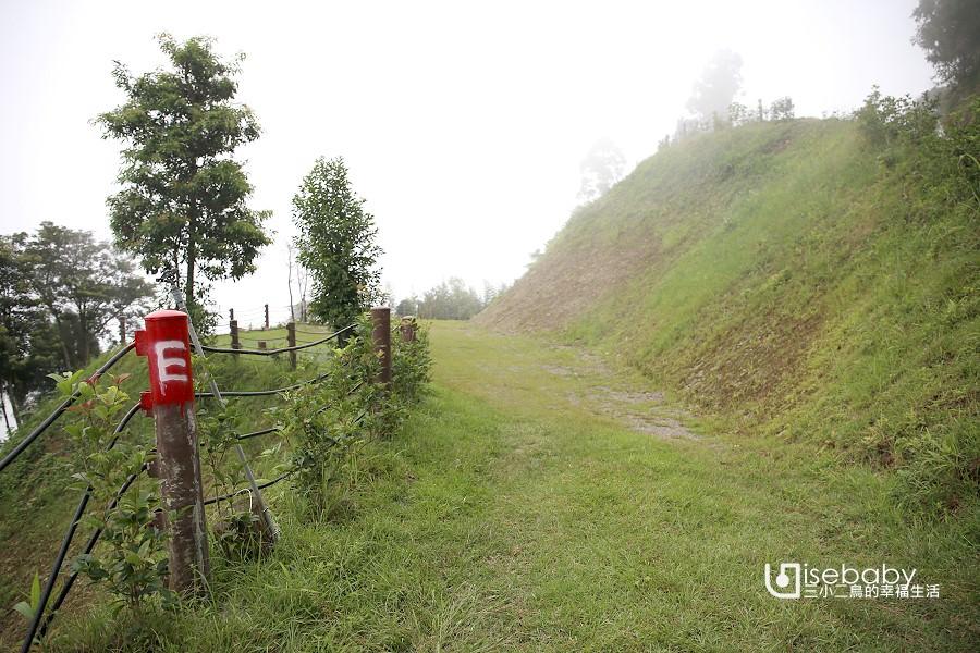 新竹露營區推薦 | 牧羊小豆子露營區.德國咕咕鐘風格高海拔森林營地
