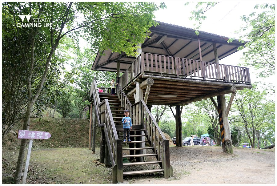 露營 | 新竹五峰。櫻之林露營區.有原住民活動的優質賞櫻營地