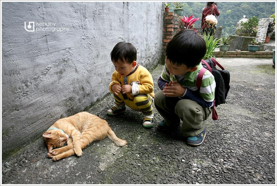 [景點] 新北市-平溪線一日遊::侯硐貓村&十分老街(5Y9M+2Y6M)