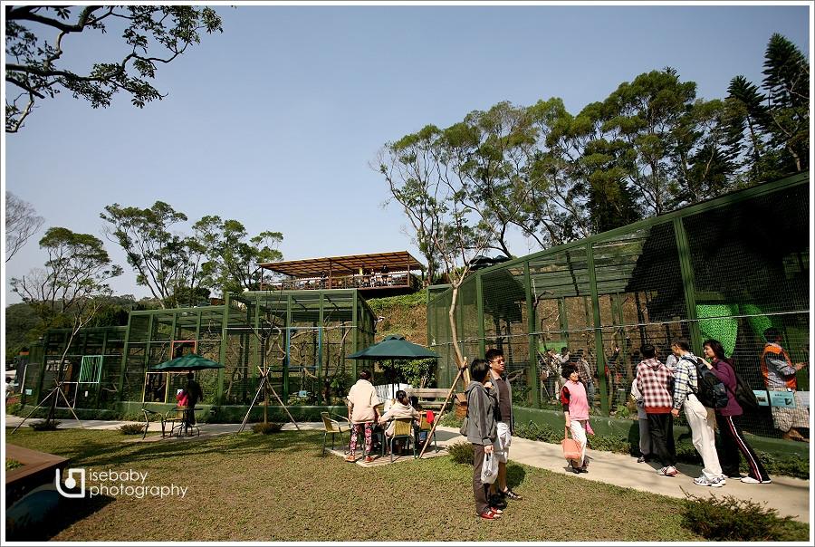 [景點] 新竹-親子出遊好去處::森林鳥花園(6Y6M+3Y2M)