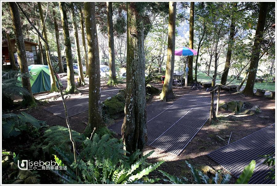 露營 | 苗栗南庄。喝納灣露營區.飄著咖啡香的原始森林優質營地