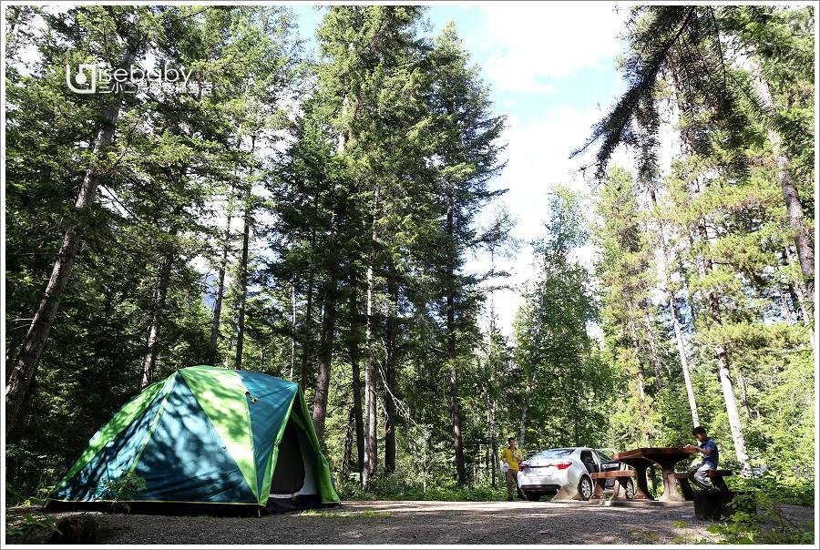 加拿大|露營。Robson Meadows Campground.原始森林環繞的省立公園營地