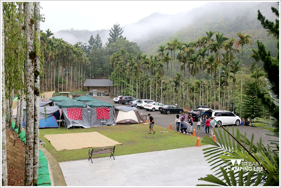 露營 | 南投魚池。魚雅筑民宿露營.設備完善的賞螢賞桐戲水優質營地