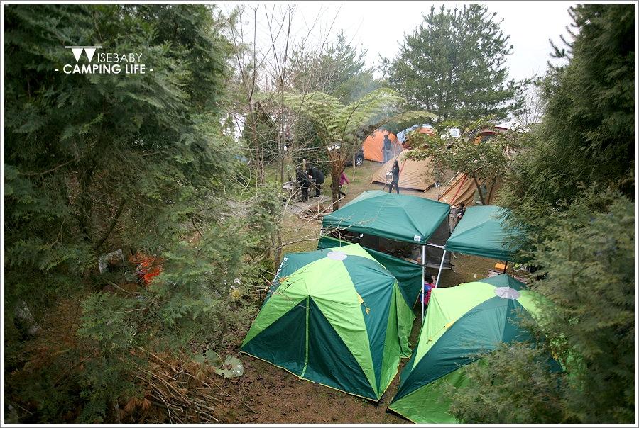 露營 | 南投信義。張家堡森林梅園.絕美的賞梅營地