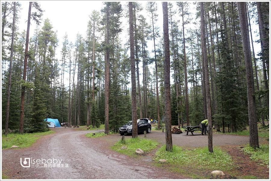 加拿大 | 露營。Lake Louise Campground.地松鼠就在帳篷前的野生動物園營地