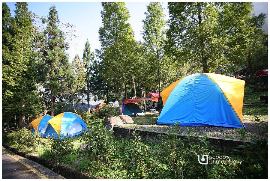 露營 | 南投鹿谷。溪頭露營區.高海拔的避暑無電營地