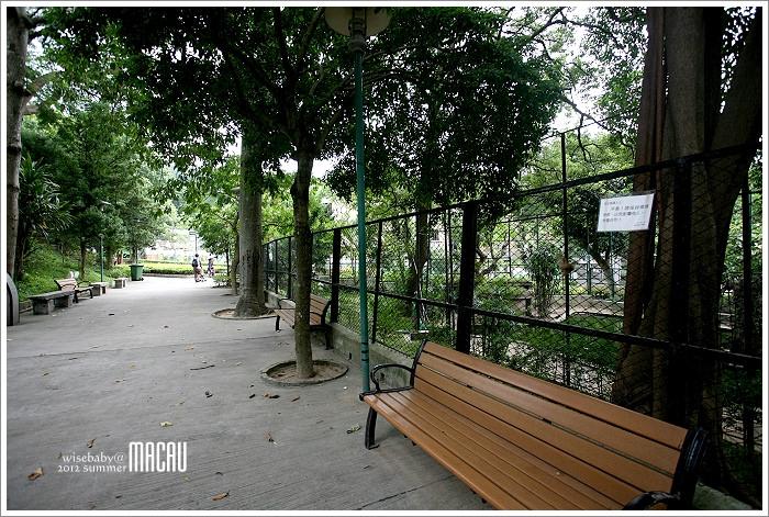 澳門親子自助【15】是公園也是動物園.二龍喉公園