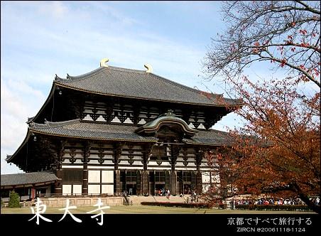 楓情Kyoto::第七天::熱情的奈良公園