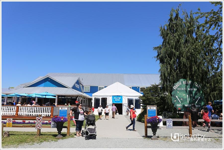 加拿大 景點。Krause Berry Farms.溫哥華近郊推薦行程U-PICK自採藍莓農場