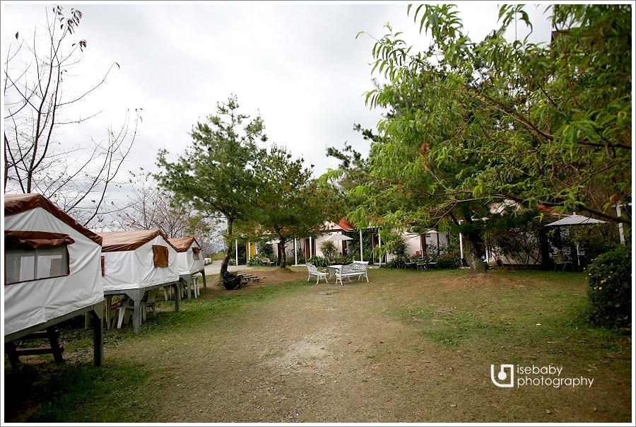 露營 | 南投仁愛。青青草原客棧.清境農場住宿營地