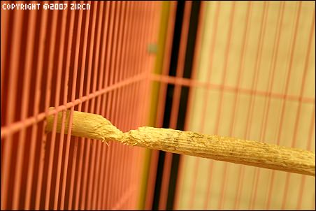 [鳥日記] 解答-寶寶嘴工特製棲木